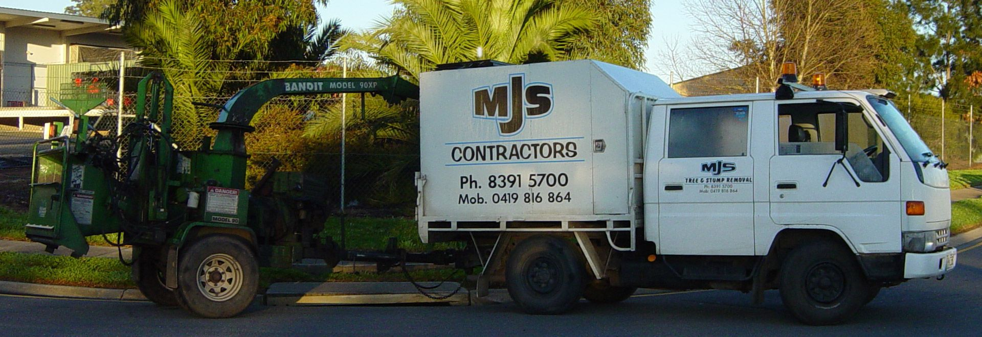 Tree Removal Services in Adelaide Hills and Adelaide - MJS Tree & Stump